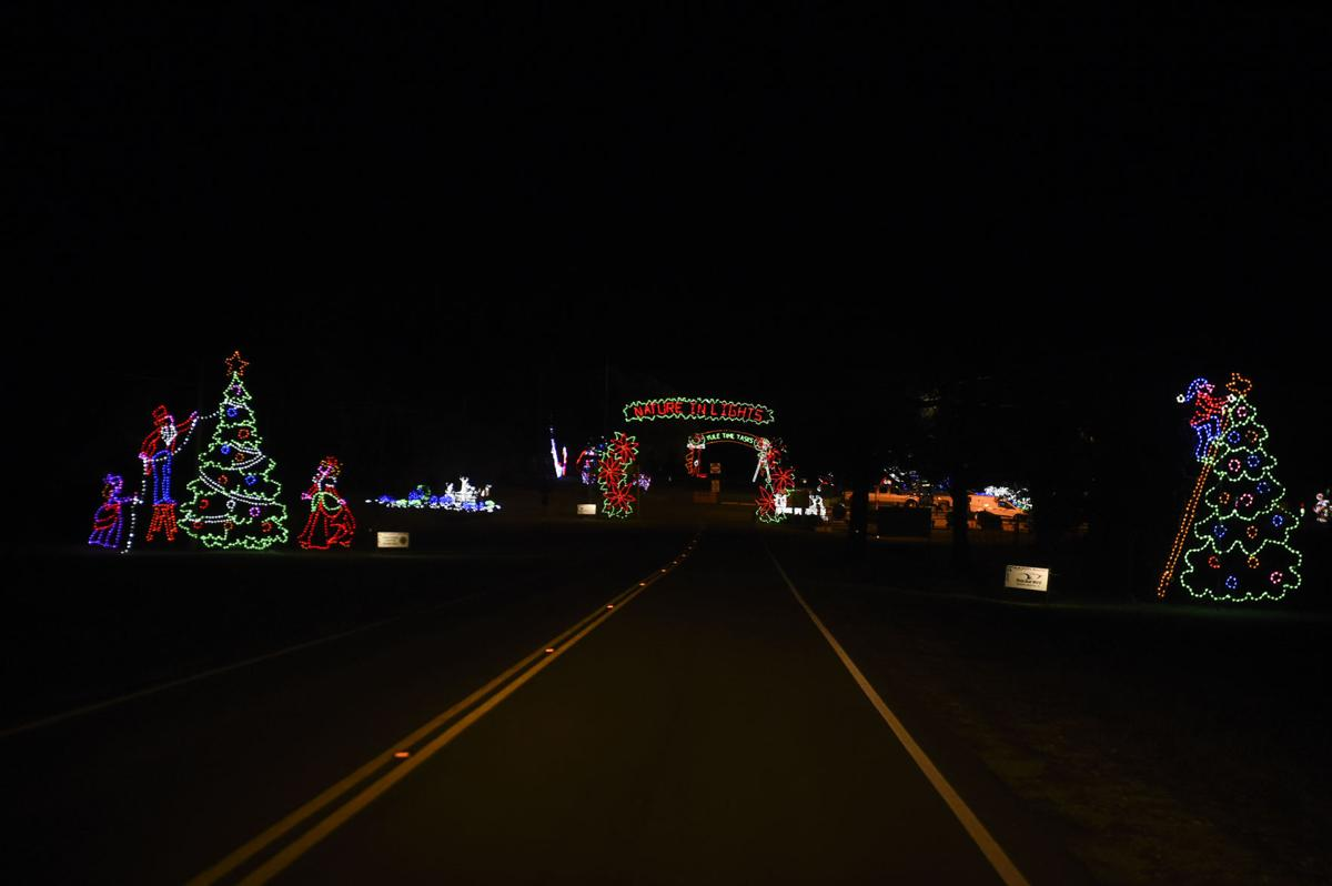 Blora Christmas Lights 2021 Nature In Lights Trail Now Open At Blora News Forthoodsentinel Com