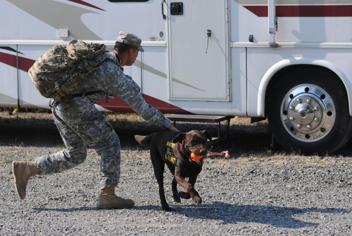 Military Working Dog teams put to the test for