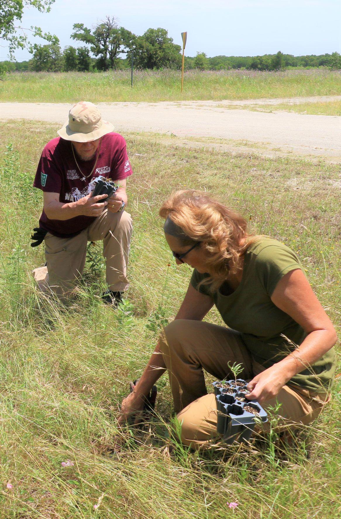 Volunteers Naturalists