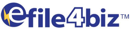 efile4Biz.com