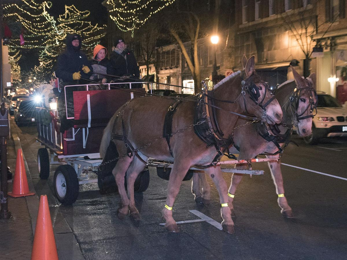 Downtown carriage rides face battle with naysayers | Economy