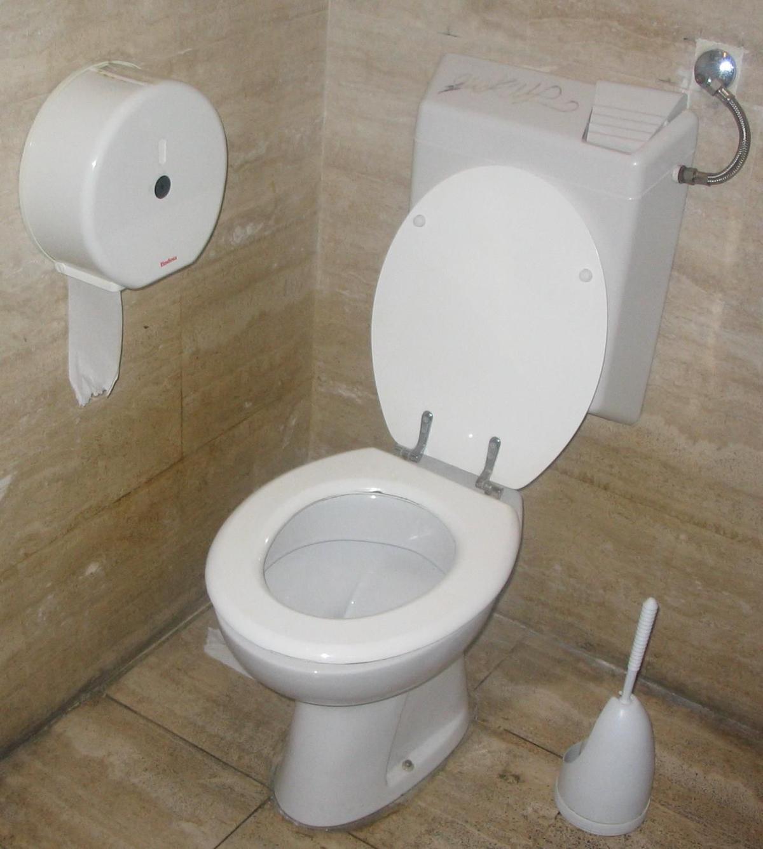 Toilet tips: Flushable wipes aren\'t so flushable, plumber says ...