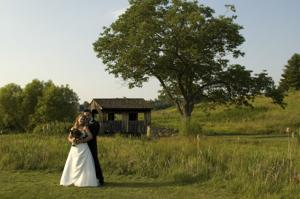 Bridal Couple 2