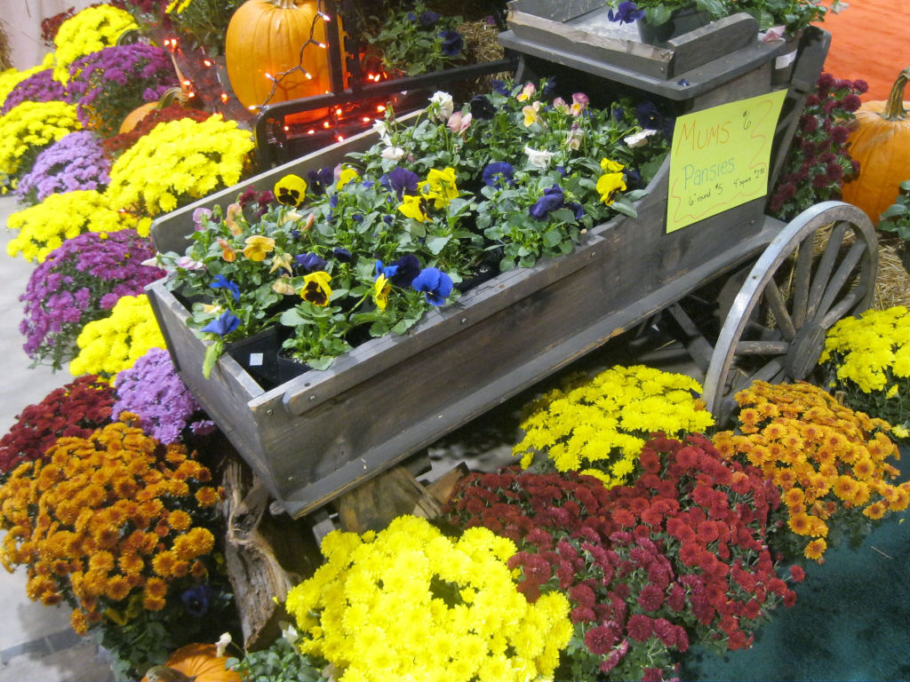 Inspiration Renovation And Innovation At Fall Maryland Home Garden Show Home And Garden