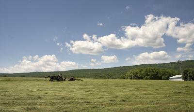 Frederick County To Preserve Nearly 500 Acres Of Farmland With 3 1m State Grant