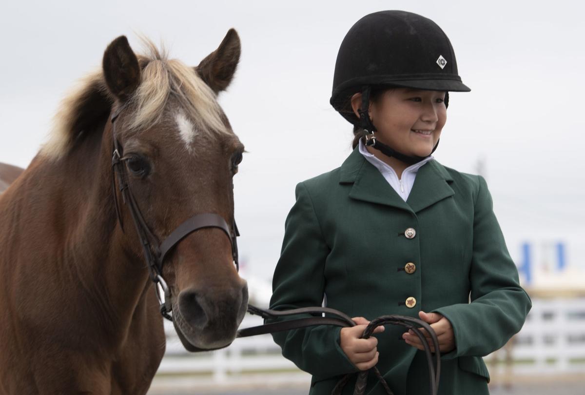 Fair Horse Competition