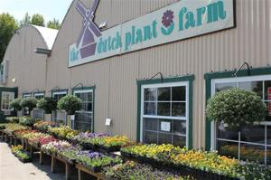 dutch plant farm