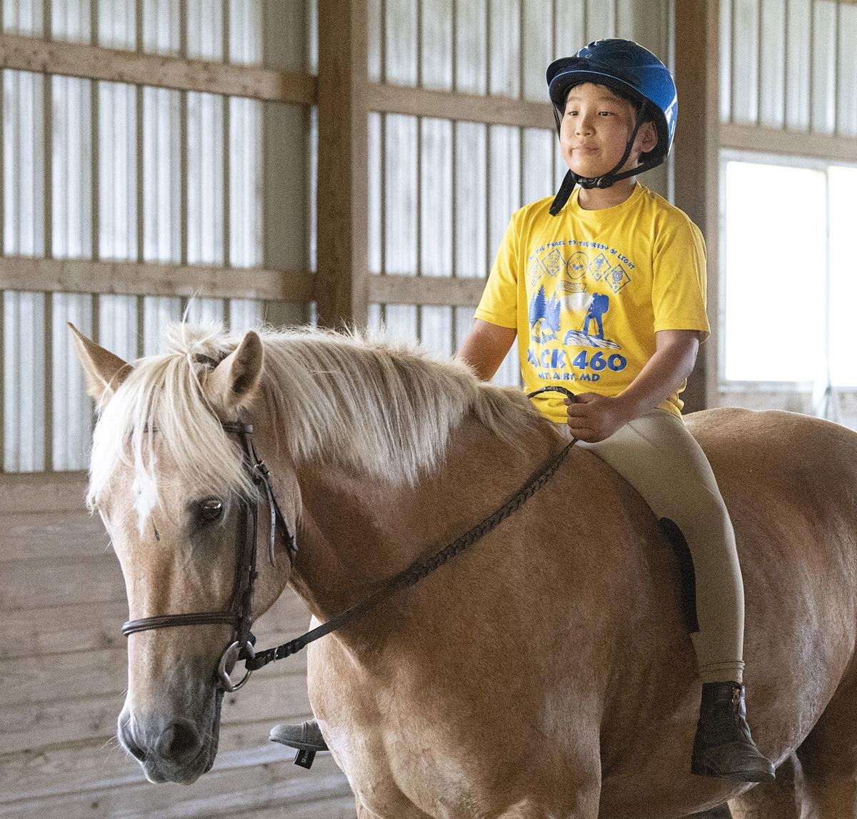 Talbolt Run Horse Farm