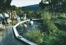Fish tale sabillasville veterinarian goes all natural for Koi pond swimming pool conversion