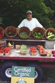 USDA praised for busting fake organic Chinese food scam