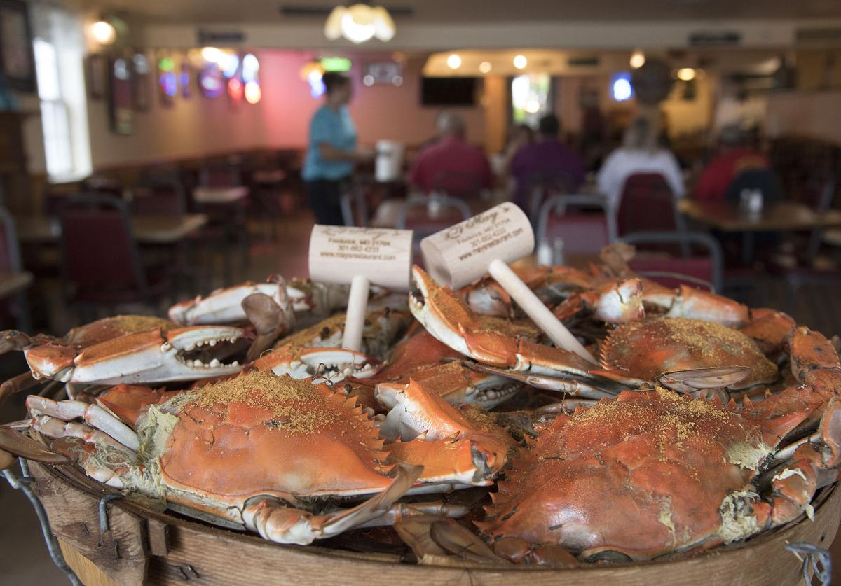 Dg Dish May S Seafood 2