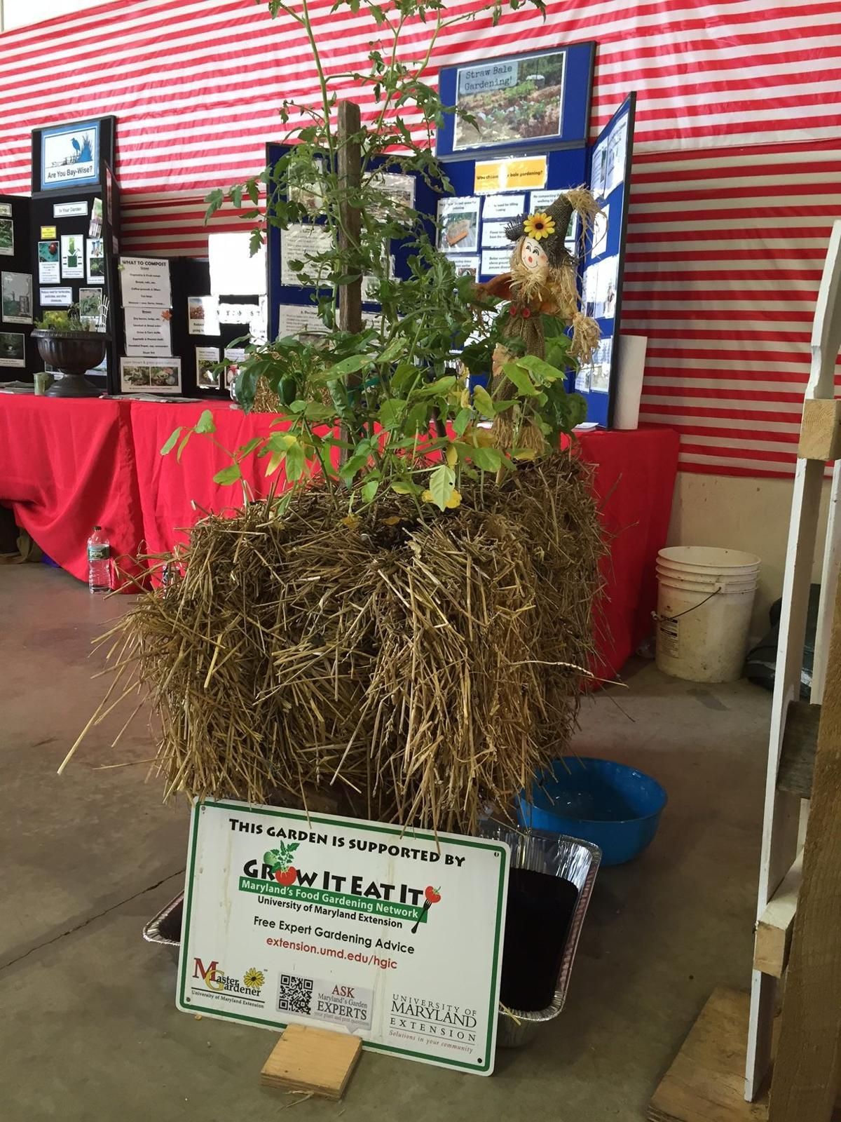 Master gardeners at The Great Frederick Fair | Home And Garden ...