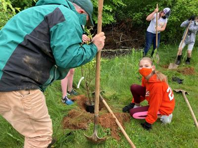 Tree planting at Wolfsville Elementary