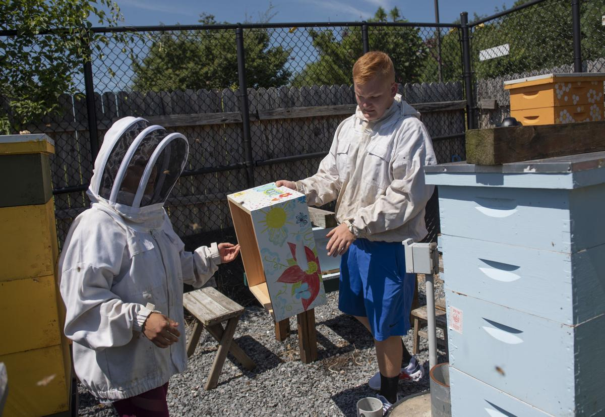 Hood College Honey Bee boxes