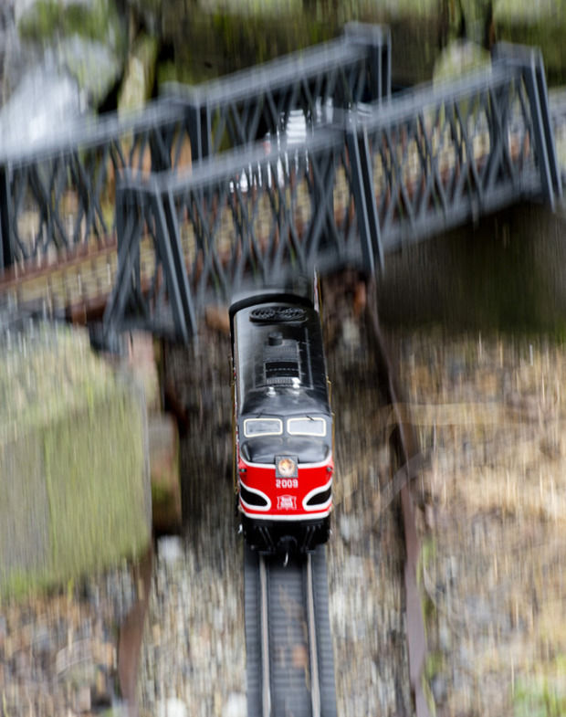 Train-lovers gather around model locomotives