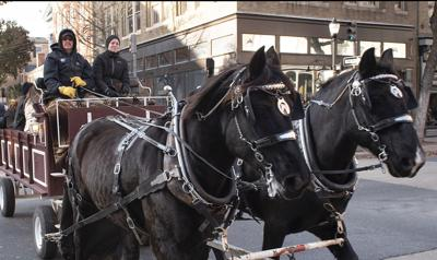 Horse-drawn carriages (copy)