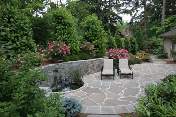 Plan properly when planting for privacy | Lifestyle ...