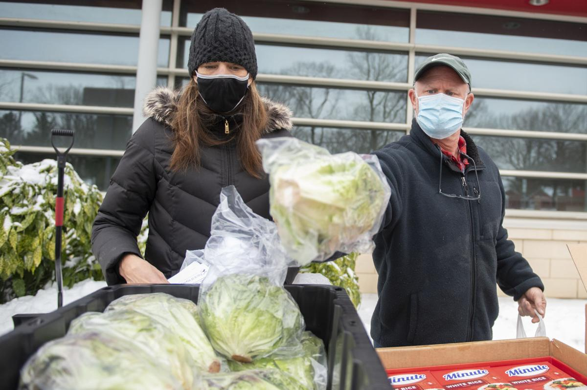 Farm to School Lettuce