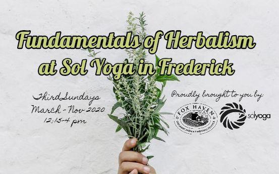 Fundamentals of Herbalism at Sol Yoga