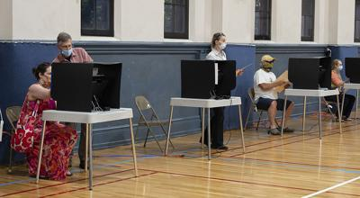 Primary Voters (copy)