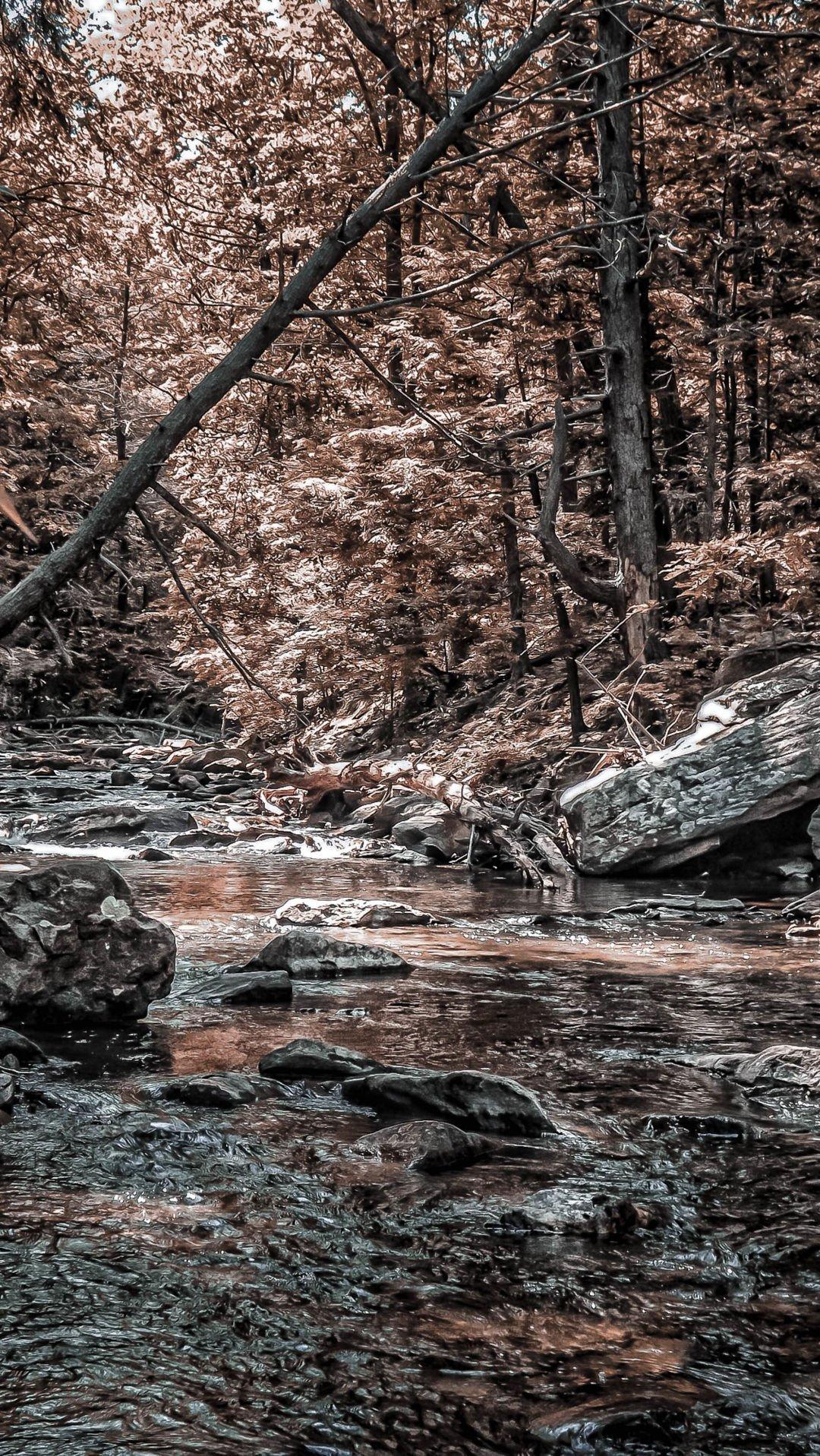 late fall at the creek_.jpg