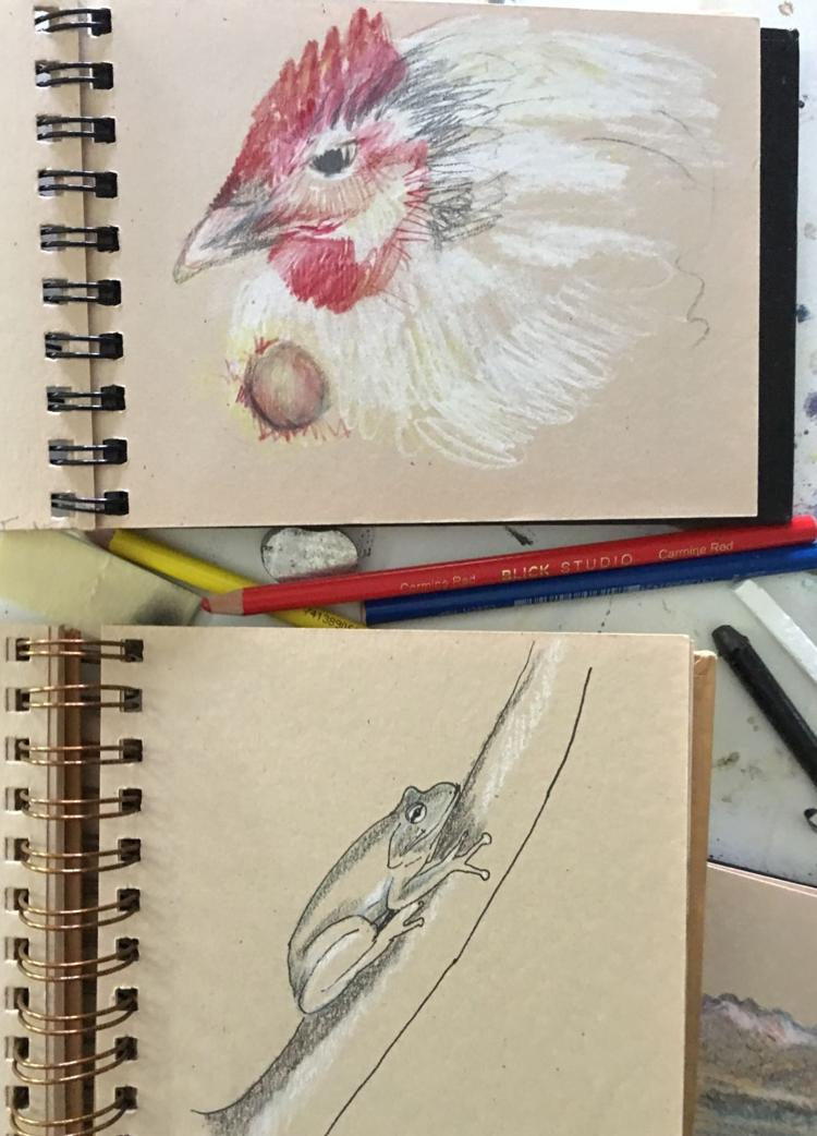 Selected sketches by Anne Gibson Snyder