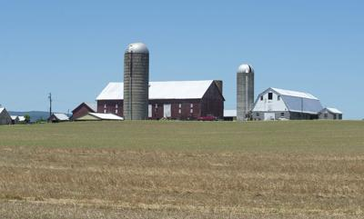 Biggs Ford Solar Farm (copy)