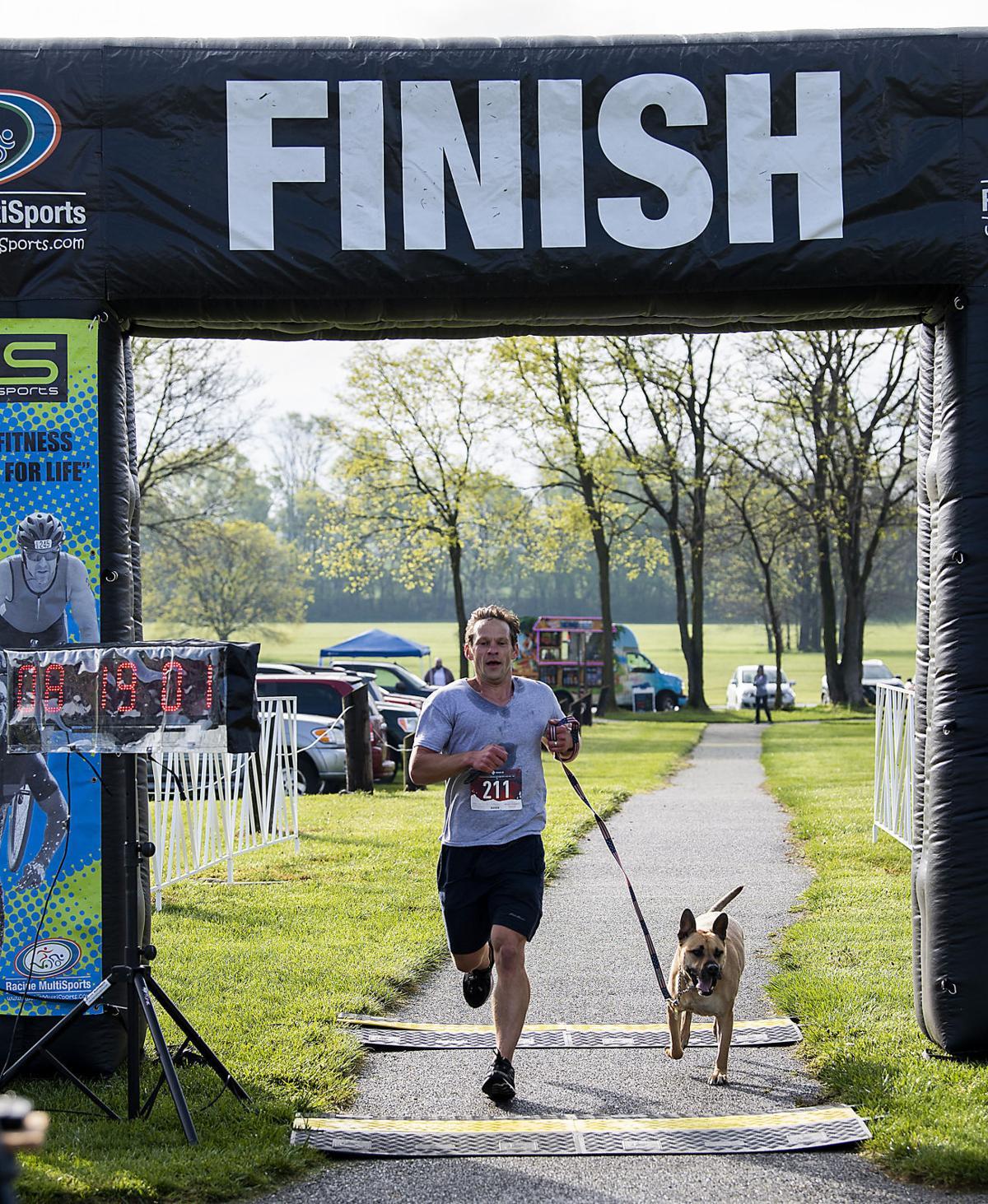 Furry Dog Run