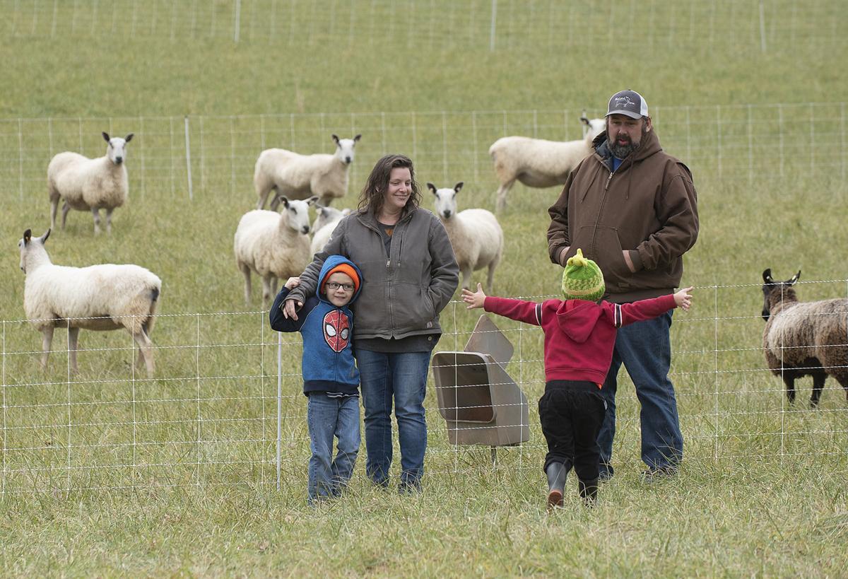 Mt Airy farm story 1