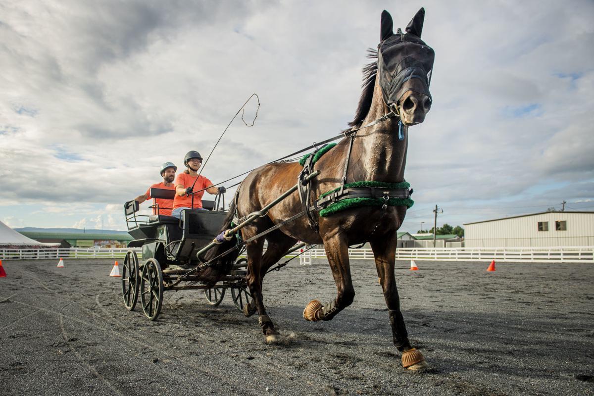 Day One of Fair-Horse Race