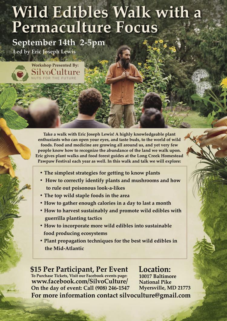 Edible Plant Walk Poster