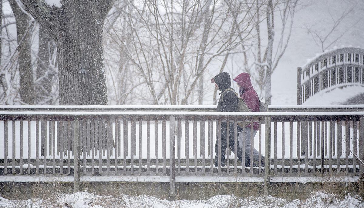Monday Snow Strool