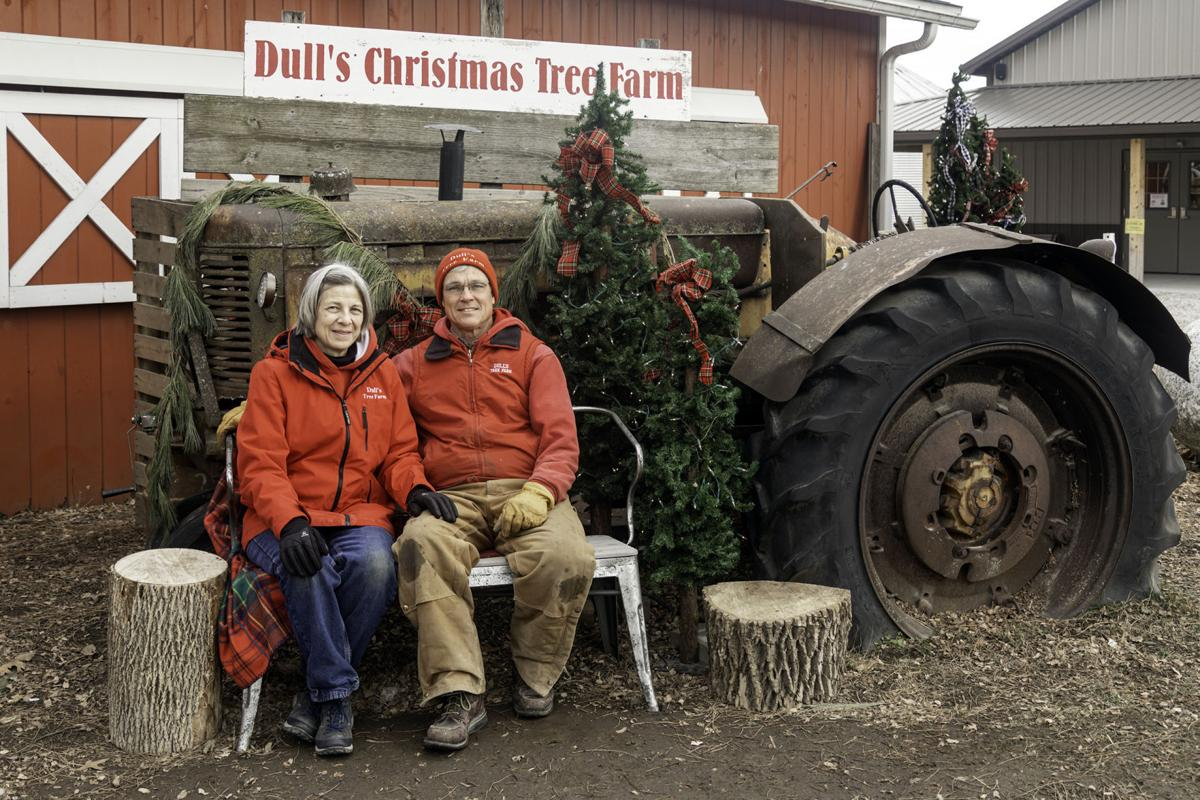 Dull's Tree Farm continues to brighten Christmas