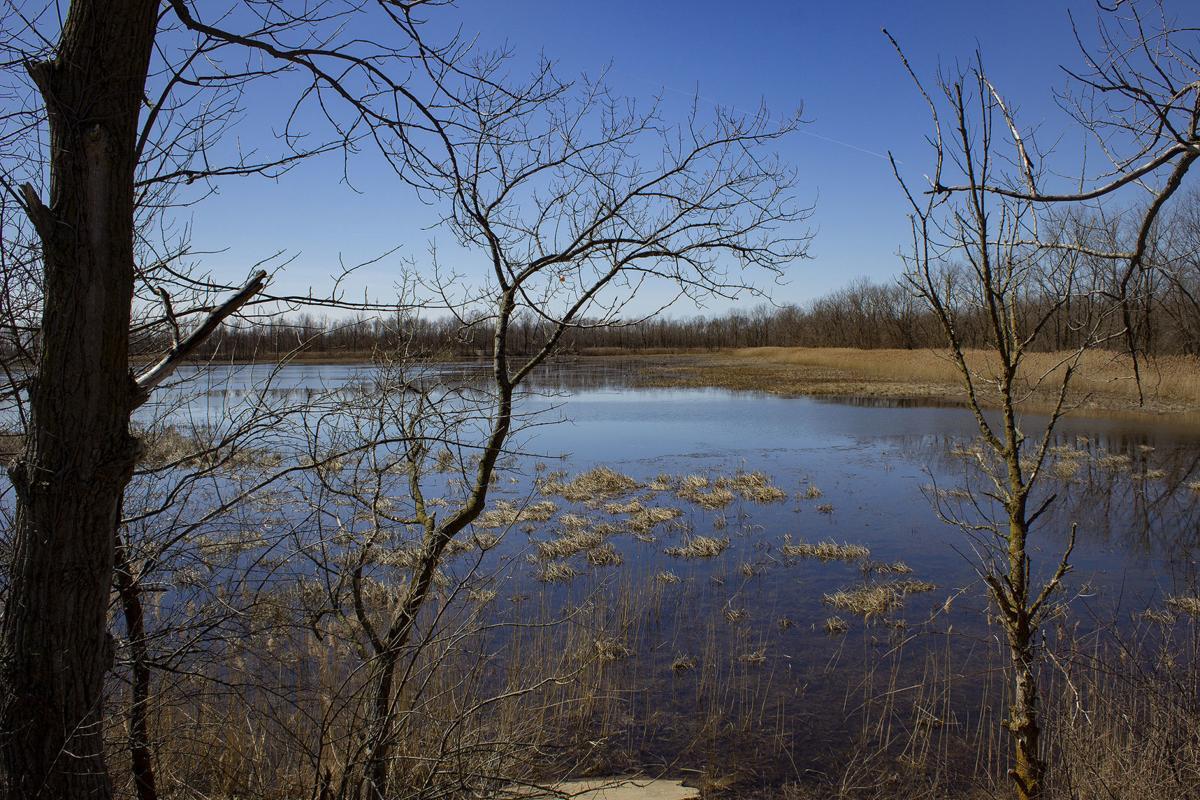 Lagoons PHOTO 1