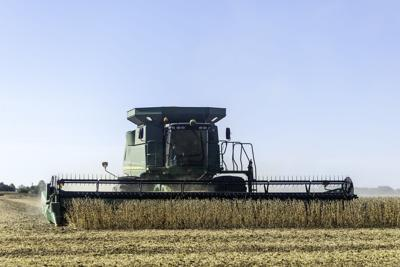 Harvest PHOTO 1