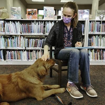 Luna the Library Dog PHOTO 1