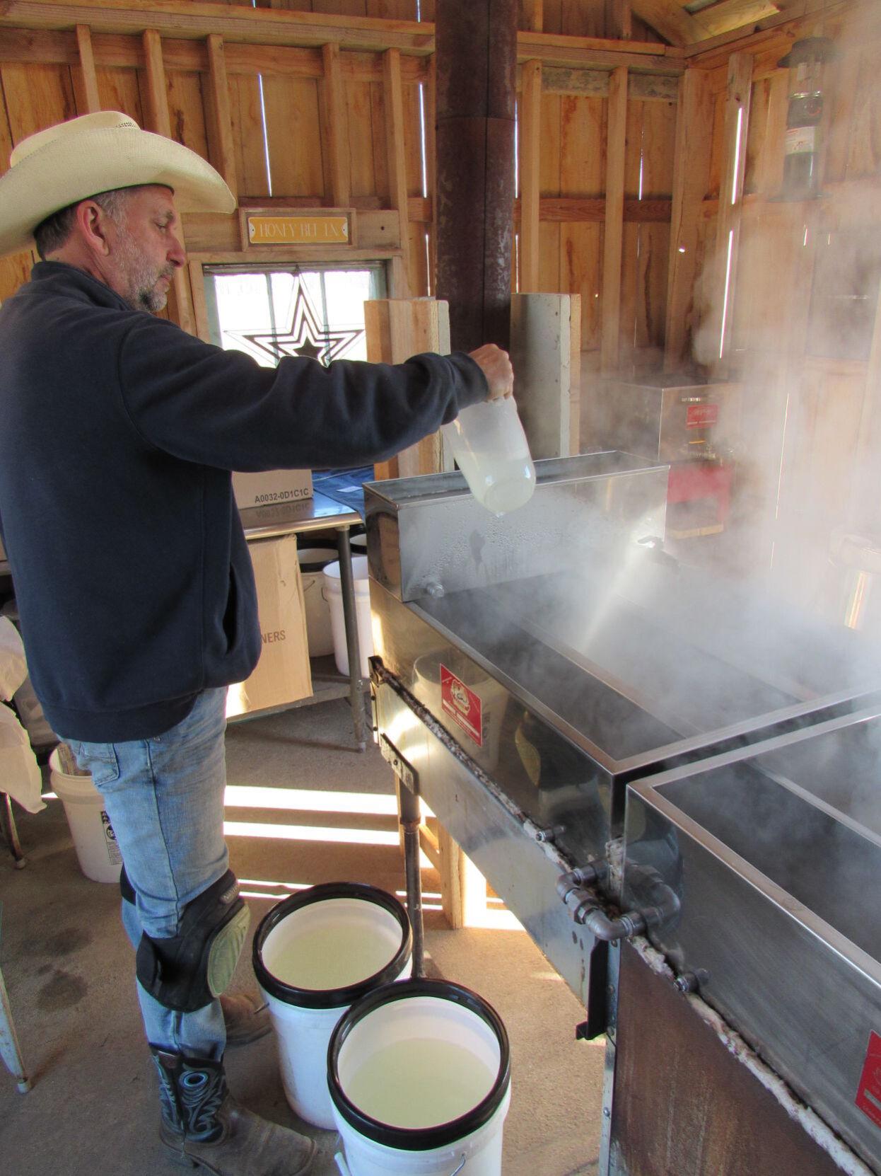 Maple syrup at Jackson farm