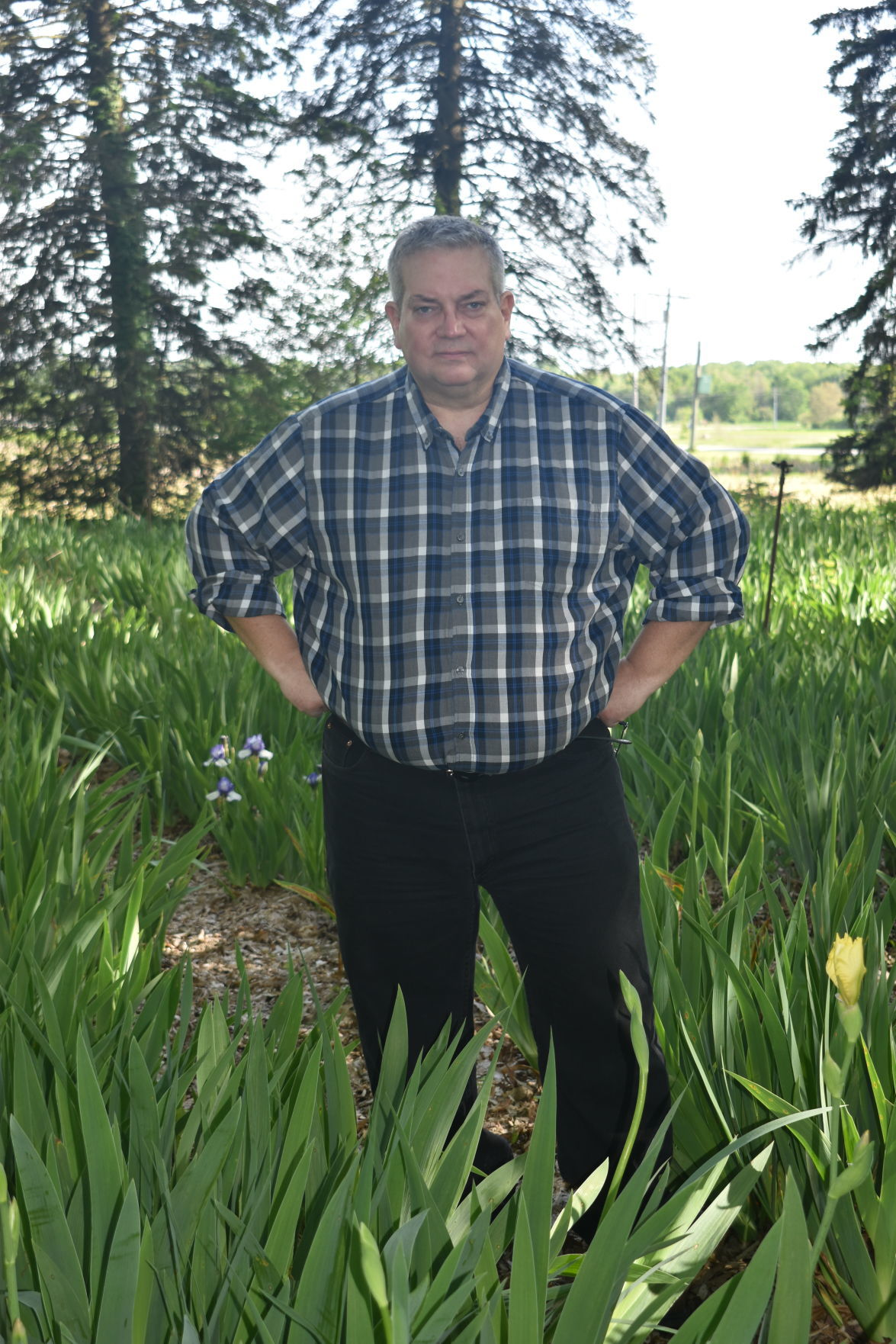 Phil Goss in iris field