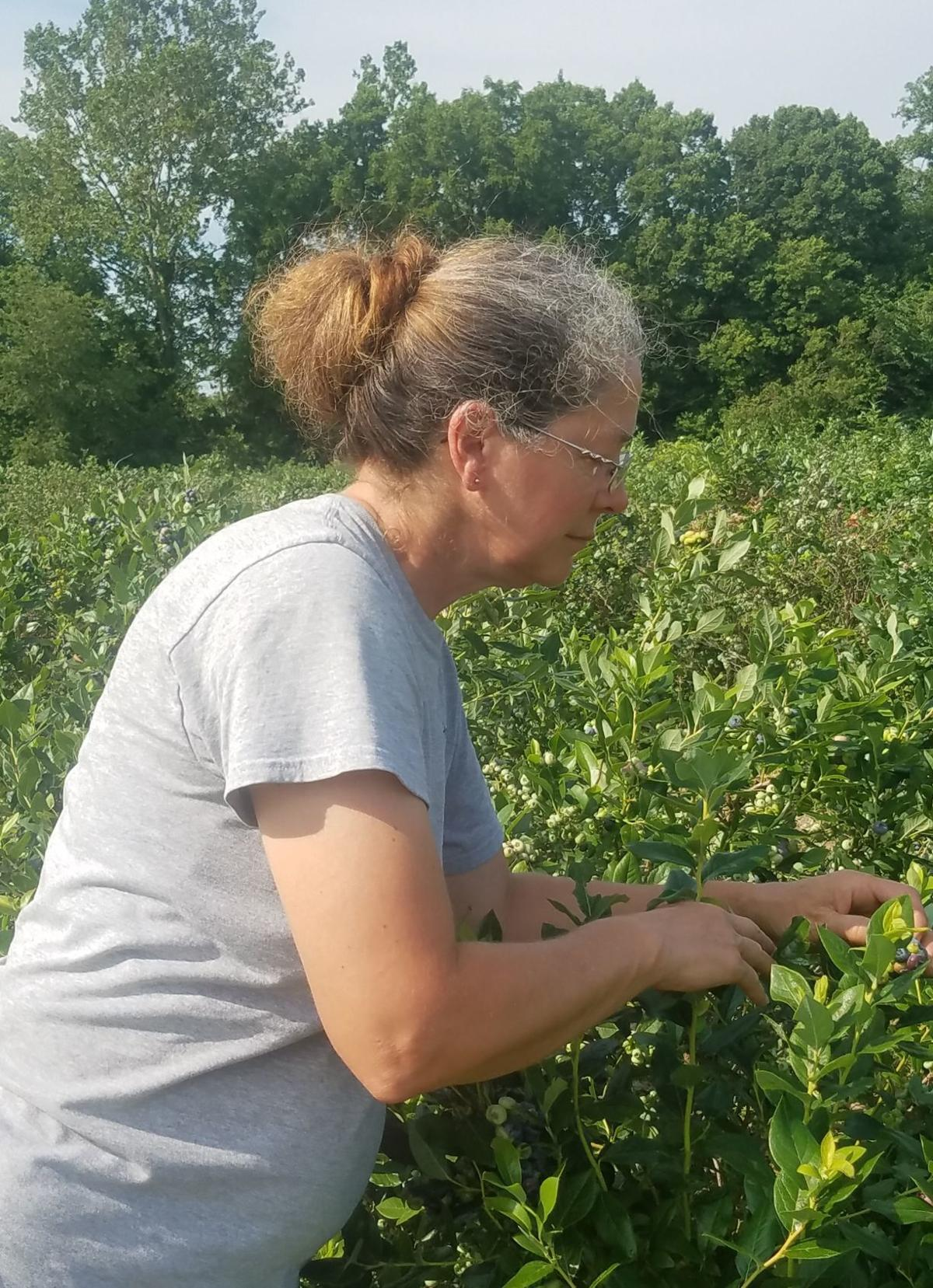 Hard work pays off at Cedar Creek Produce | Fwbusiness