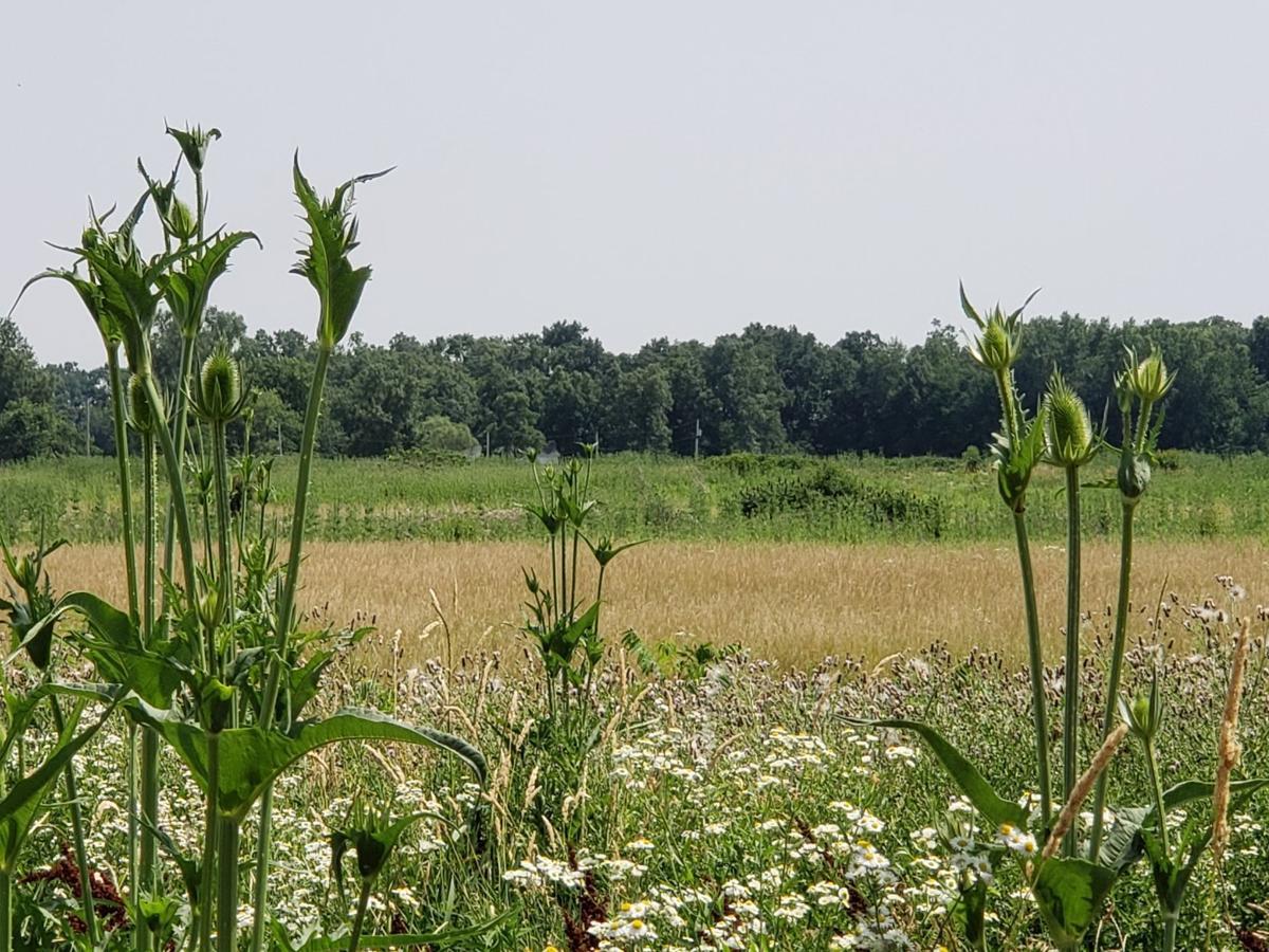Prairie Landing land