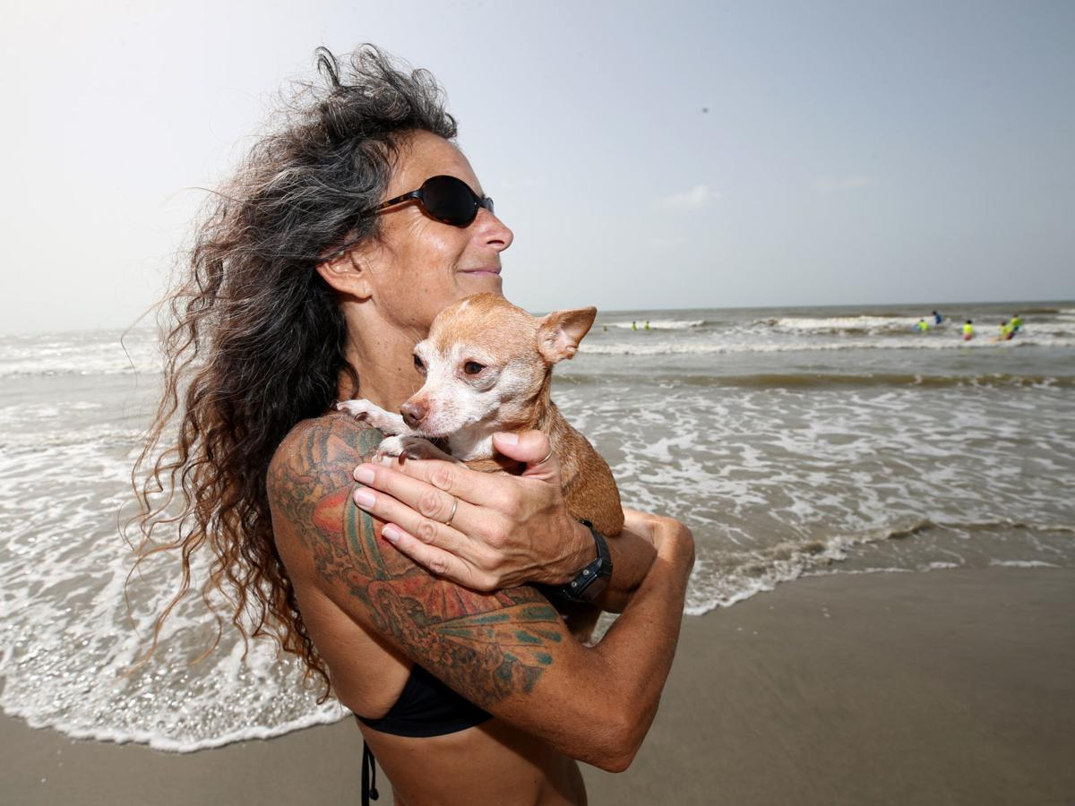Galveston dog, owner surf their way into competition