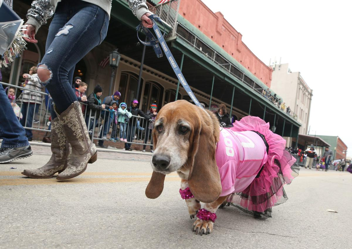 20th annual Krewe of Barkus & Meoux Parade