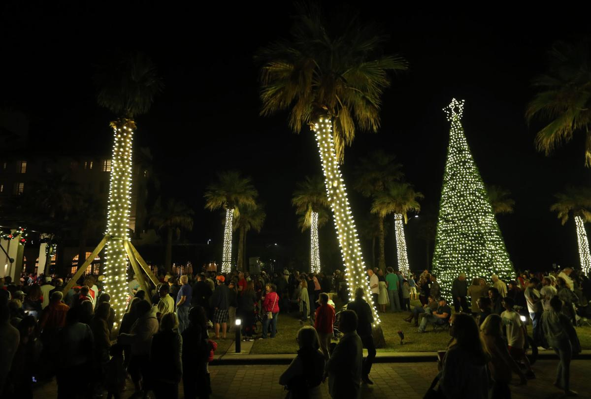 Hotel Galvez tree lighting