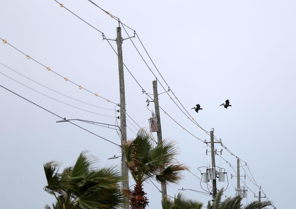 Power line doodads