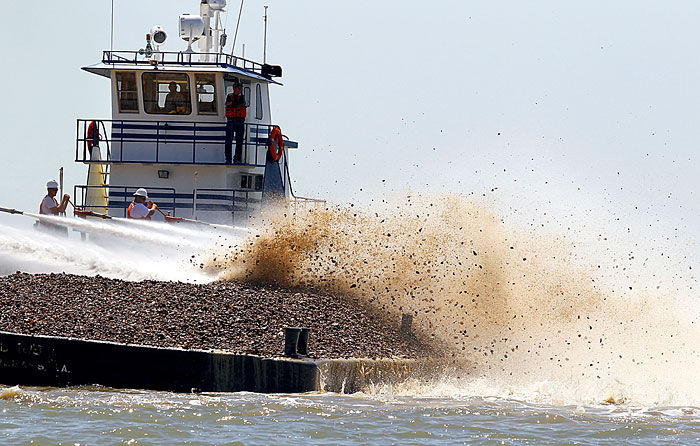 Oyster Reef Restoration project