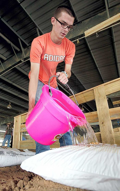 Favored events return to rodeo
