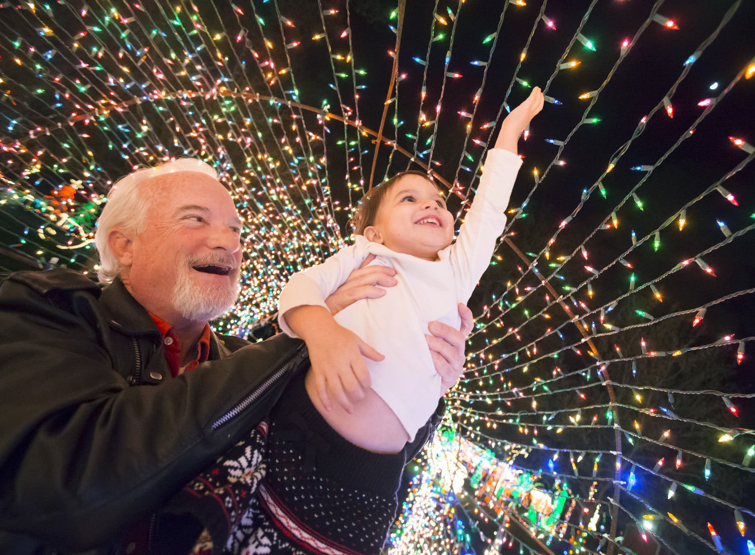 Photos: Dickinson Festival of Lights | In Focus | The Daily News