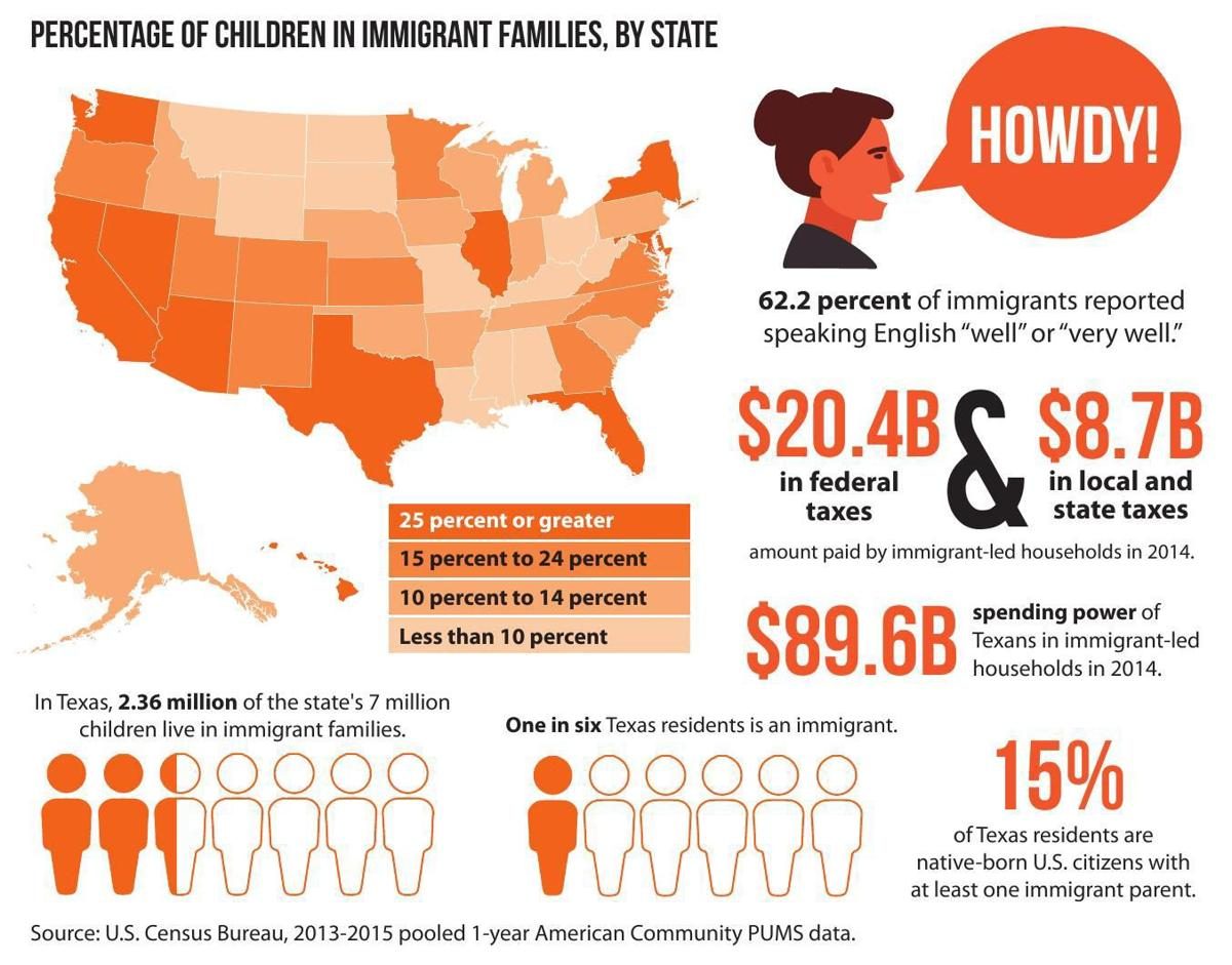 Immigrant infographic