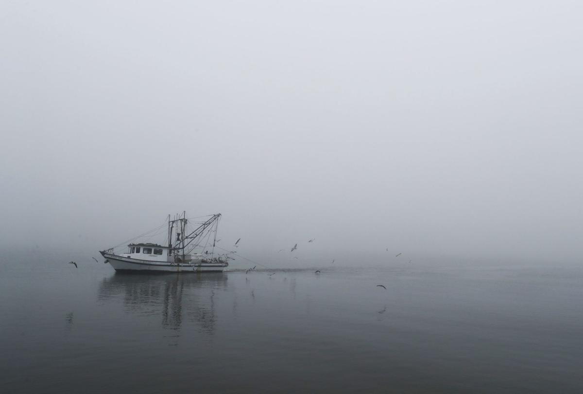 Fog causes port problems
