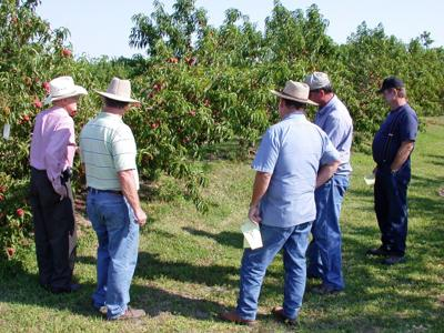 2017 Fruit Orchard and Garden Tour